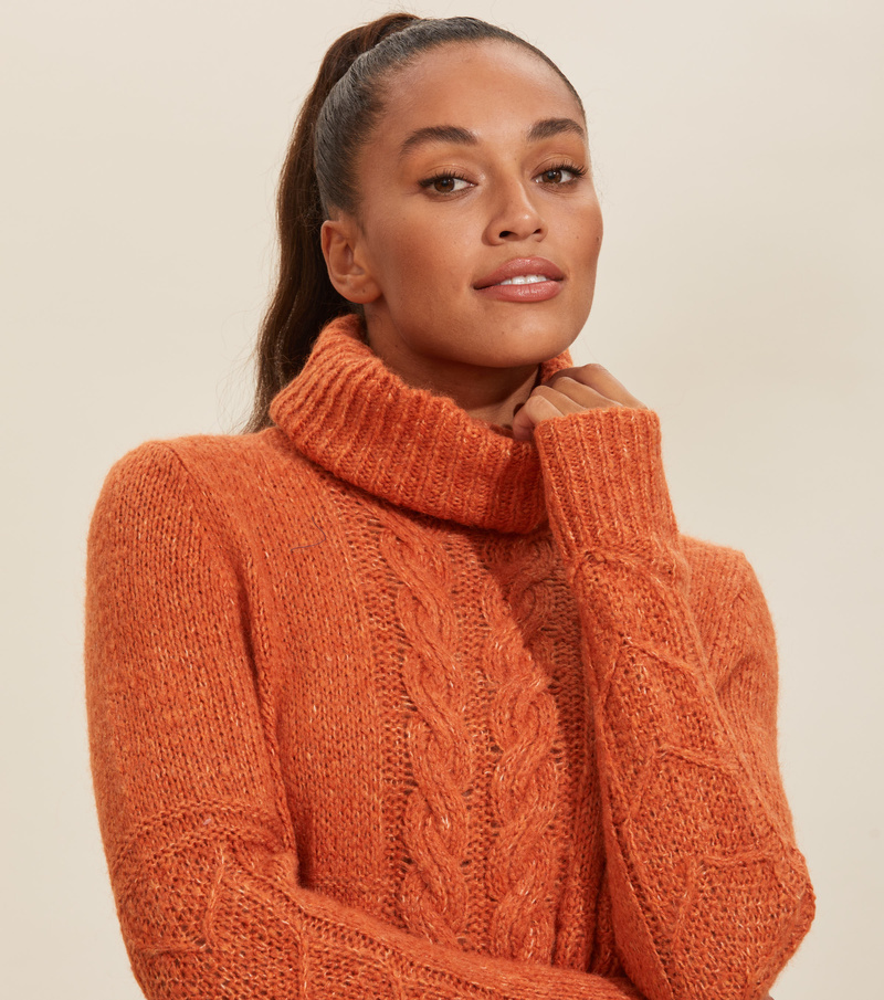 Cozy Hugs Turtleneck