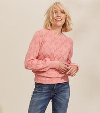 Curious Sweater